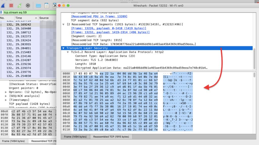 Wireshark analyzer
